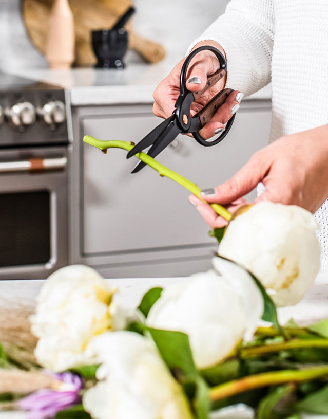 cutting peonies
